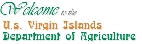 Welcome to U.S. Virgin Island Department of Agriculture